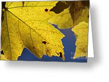 Autumn No. 1 Greeting Card