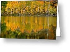 Autumn Impressions 2 Greeting Card