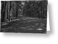 Autumn In Black And White Greeting Card
