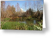 Autumn In Washington Dc Greeting Card