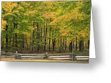 Autumn In Door County Greeting Card
