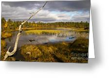 Autumn In Finland Near Inari Greeting Card