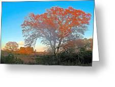 Autumn In Georgia Greeting Card