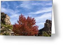 Autumn In Glenwood Canyon - Colorado Greeting Card