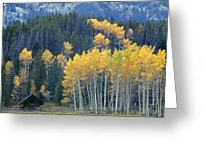1m9359-autumn In Jackson Hole Ranch Country Greeting Card