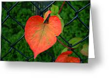 Autumn In July Greeting Card