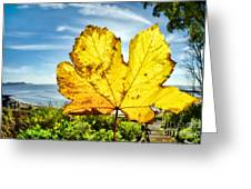 Autumn In Lyme Regis Greeting Card