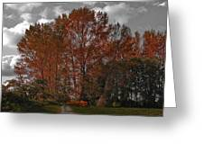 Autumn In Mt Vernon Greeting Card