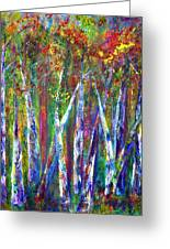 Autumn In Muskoka Greeting Card