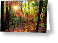 Autumn In South Carolina Greeting Card
