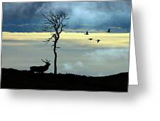 Autumn In Strathglass Greeting Card