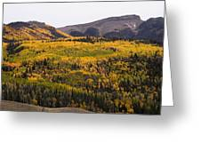 Autumn In The Colorado Mountains Greeting Card