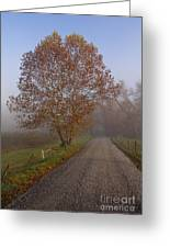 Autumn In The Cove V Greeting Card