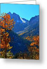 Autumn In The Sierras Greeting Card