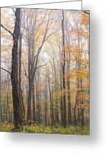 Autumn In The Smoky Mountains Greeting Card