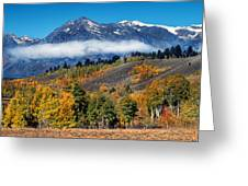 Autumn In The Tetons Greeting Card