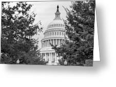 Autumn In The Us Capitol Bw Greeting Card