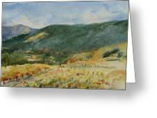 Harvest Time In Napa Valley Greeting Card