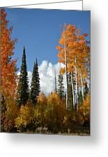 Autumn In Utah Greeting Card