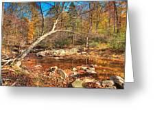 Autumn In Virginia Greeting Card