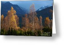 Autumn Into Winter - Cairngorm Mountains Greeting Card
