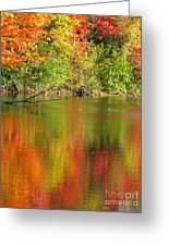 Autumn Iridescence Greeting Card