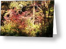 Autumn Is In The Air Greeting Card