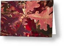 Autumn Is When Every Leaf Is A Flower Greeting Card