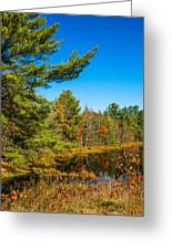 Autumn Lake 4 Greeting Card
