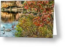 Autumn Lake And Swan Greeting Card