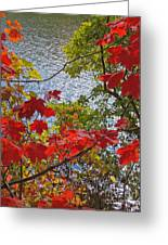 Autumn Lake Greeting Card