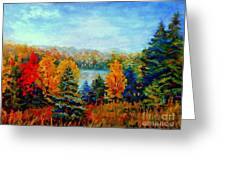 Autumn Landscape Quebec Red Maples And Blue Spruce Trees Greeting Card