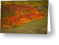 Autumn Lava Flow Greeting Card