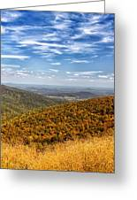 Autumn Layers Greeting Card