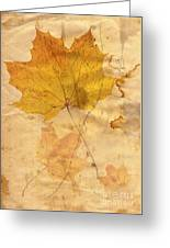Autumn Leaf In Grunge Style Greeting Card