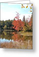 Autumn Leaning Tree Greeting Card