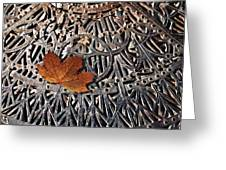 Autumn Leave On Iron Grate Greeting Card