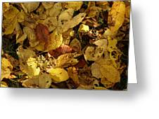 Autumn Leaves 94 Greeting Card