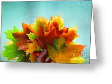 Autumn Leaves Colors Greeting Card