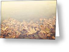 Autumn Leaves Floating In The Fog Greeting Card
