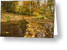 Autumn Leaves In A Burn Greeting Card