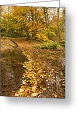 Autumn Leaves In Burn Vertical Greeting Card