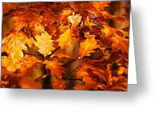 Autumn Leaves Oil Greeting Card