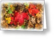 Autumn Leaves Photo Art 04 Greeting Card