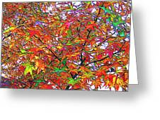 Autumn Leaves Through Filtered Sunlight II Greeting Card