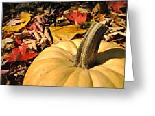 Autumn Leaves With Pumpkin Greeting Card