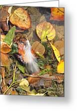 Autumn Leavings Greeting Card