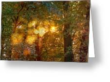 Autumn Light Symphony Greeting Card