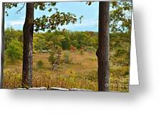 Autumn Look Out Greeting Card