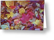 Autumn Maple Leaves On Forest Floor Greeting Card